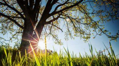 sunce-suncano-vedro-lijepo-vrijeme-shutterstock