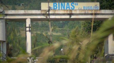 Binas-696×456