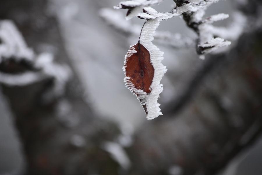 Za vikend oblačno sa slabim snijegom