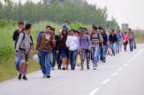 imigranti-1