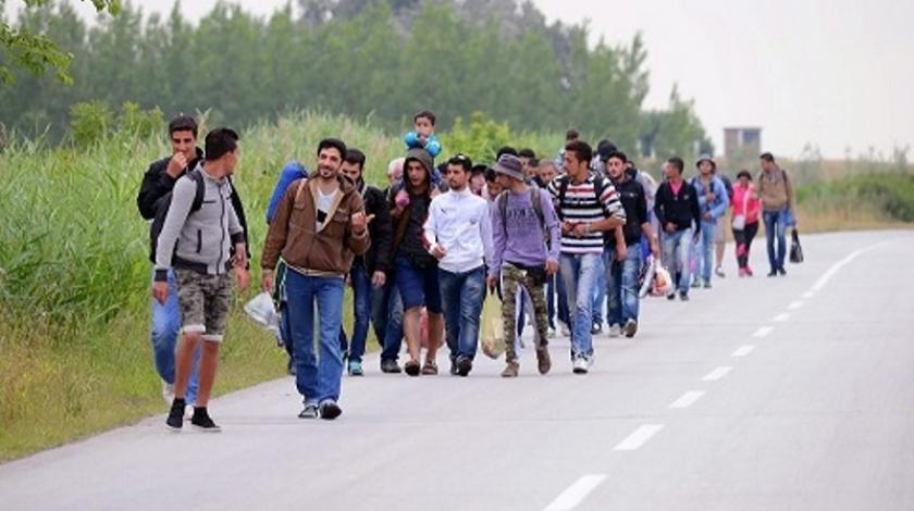 Raste broj ilegalnih ulazaka: U BiH dnevno uđe oko 50 migranata