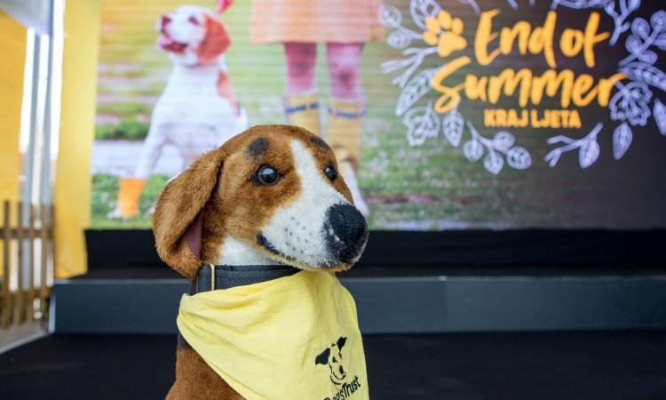 Dogs Trust: Promocija odgovornog vlasništva pasa i udomljavanja