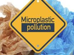 mikroplastika