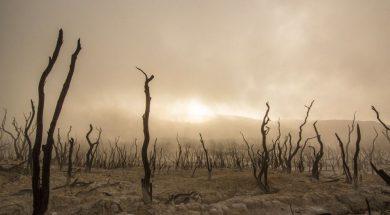 susa_pustinja_apokalipsa_kataklizma_kraj_svijeta_pixabay