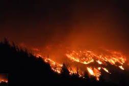 novi zeland požar