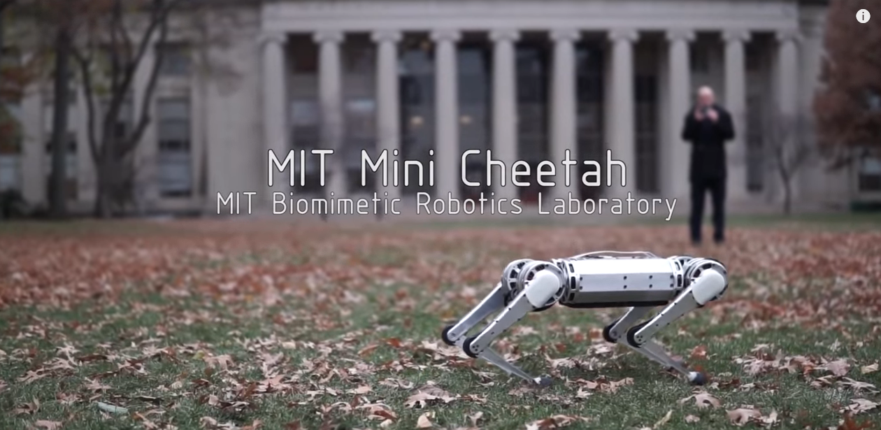 Mini Cheetah robotski pas može napraviti salto unazad