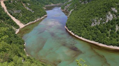 alge-vrbas