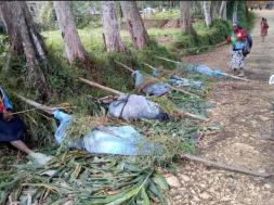 Screenshot_2019-07-10 Papua Nova Gvineja U sukobu plemena ubijene 24 osobe, među njima trudnice i djeca