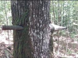 Screenshot_2019-08-21 Kod Lukavca pronađen minobacački projektil zabijen u drvo
