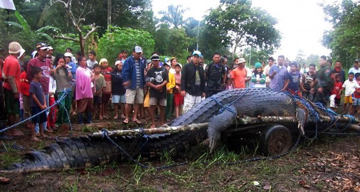 Krokodil pojeo dječaka pred bratom i sestrom, u močvari našli samo ostatke (FOTO)
