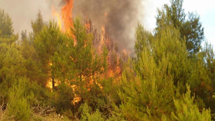 Na području HNK u protekla 24 sata zabilježeno 11 požara
