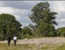 Screenshot_2019-09-15 U bunaru u Meksiku pronađena 44 tijela