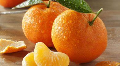 61437952-mandarina
