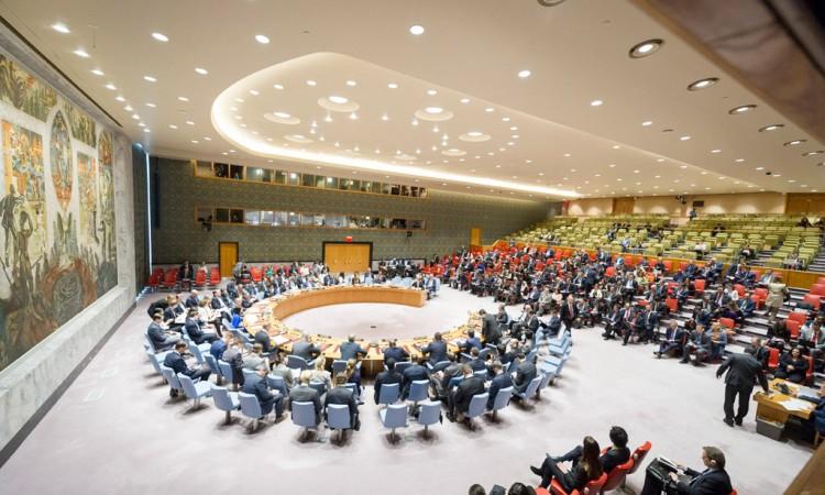 SAD i Rusija izbjegle riječ ¨osuda¨ za tursku operaciju u Siriji