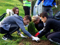 Screenshot_2019-11-11 Tuzlanski omladinci obogatili pluća grada sa 100 novih sadnica