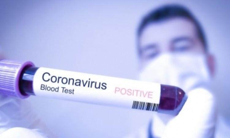 Svi oboljeli od korona virusa u distriktu Shennongjia izliječeni