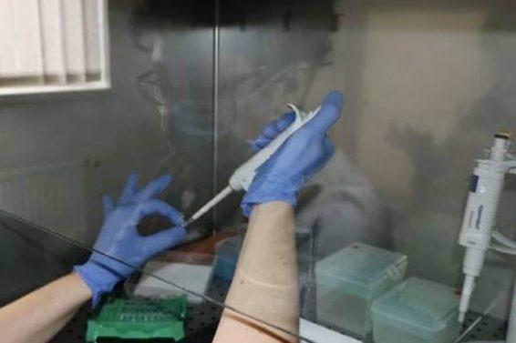 kcus_koronavirus