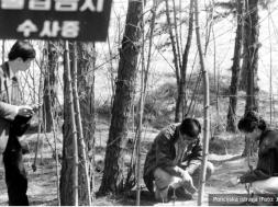 Screenshot_2020-05-25 Koreanac zbog ubistva proveo 20 godina u zatvoru, a zatim je neko drugi priznao zločin