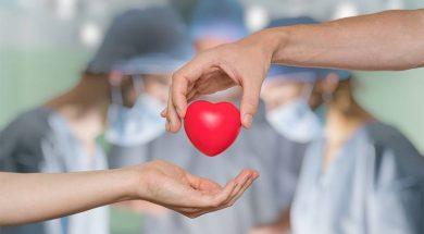 doniranje-organa