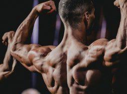 bodybuilder-1493236082