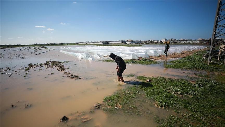 Izrael otvorio brane: Poplavljena palestinska polja, šteta 1,5 miliona dolara