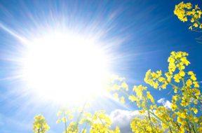 sunce_ljeto