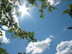 sunny-day630