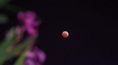 mjesec-696×456
