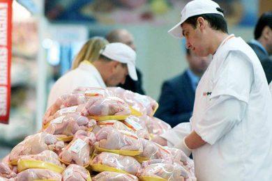 izvoz-piletina-1