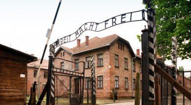 Auschwitz_wikipedia