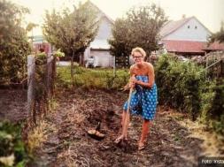 Screenshot_2020-08-04 Tijana Dapčević Ne bavimo se umjetnošću zato što nas je sramota da okopavamo krompir