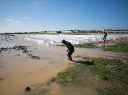 Izrael otvorio brane