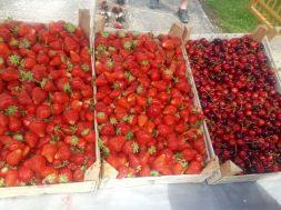 Jagode iz Čelića ove godine samo za domaće tržište