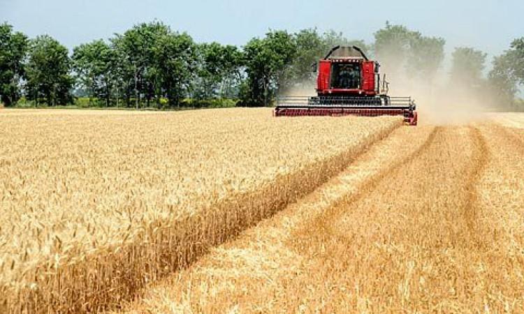 Poljoprivrednici FBiH – Hitno zaustaviti ¨lihvarenje¨